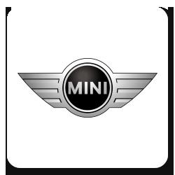 Стекла для Mini